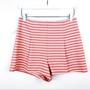 Free People HighRise Ponte-Knit Striped Shorts NWT